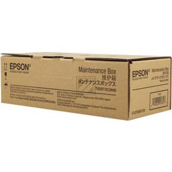 Epson Resttintenbehälter (C13T699700, T6997)